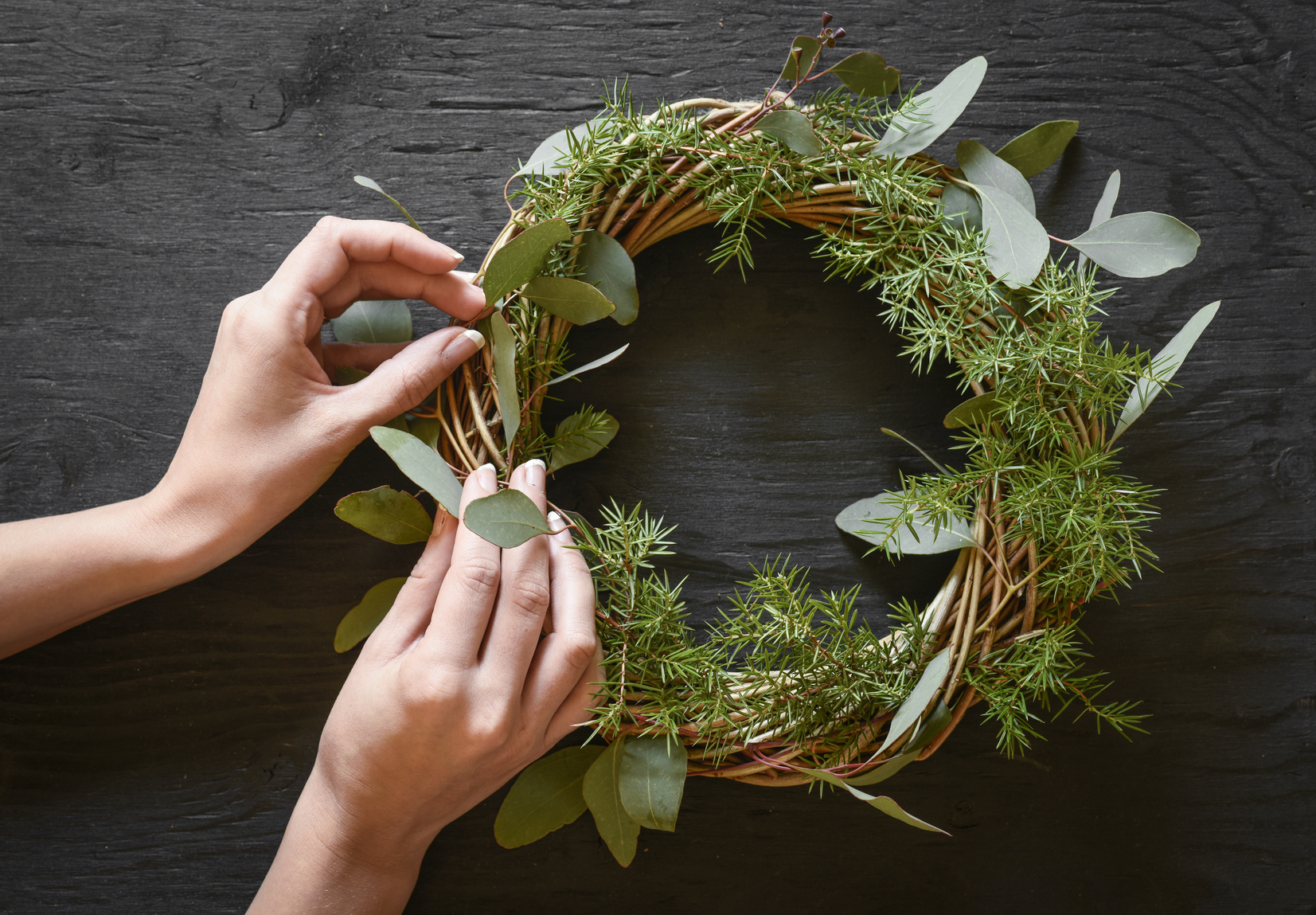 Hands making a wreath from eucalyptus and fir tree