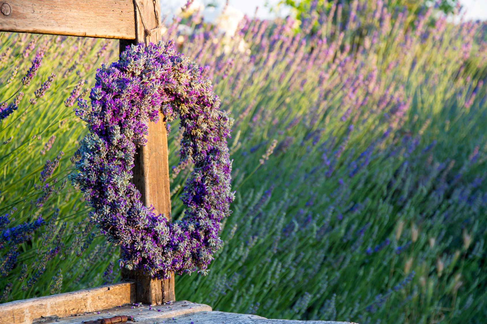 Lavender flower wreath on a wooden old bench in a summer garden